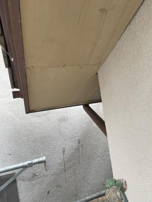 草加市金明町 軒裏修繕工事を行いました
