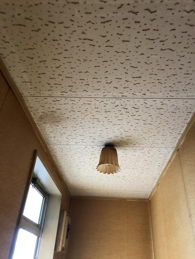 ジプトーン天井